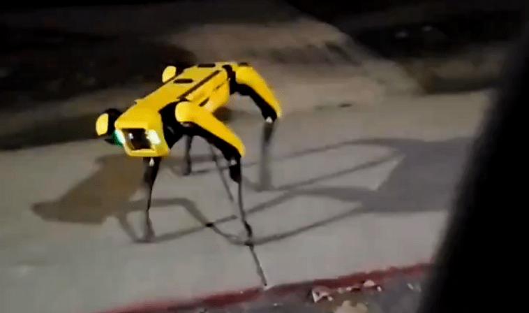 В Канаде робота Spot заметили на прогулке. Его тестировали на дистанции