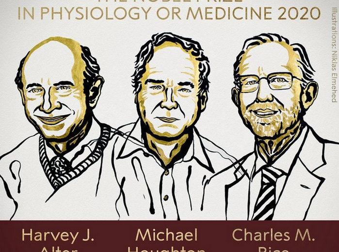 Нобелевскую премию по медицине вручили исследователям вируса гепатита С