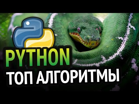 Python 5 алгоритмов для новичка!
