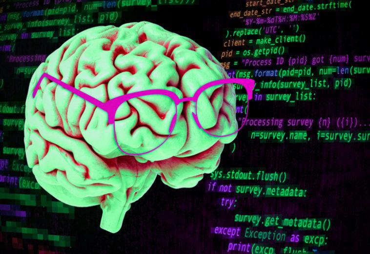 В МТИ показали, как мозг читает компьютерный код