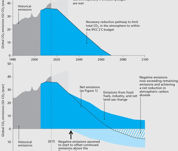 Илон Маск предлагает $100млн за технологию связывания CO₂ из атмосферы и океана