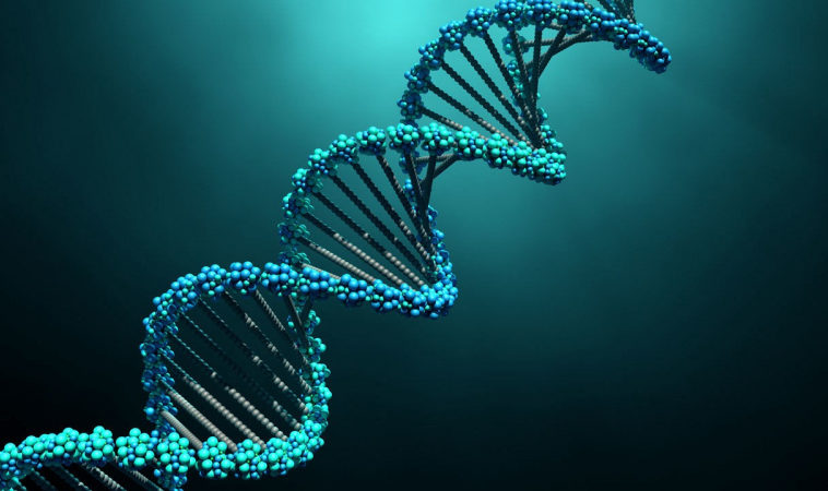 Исследователи научили нейросеть генерировать фальшивый ДНК человека