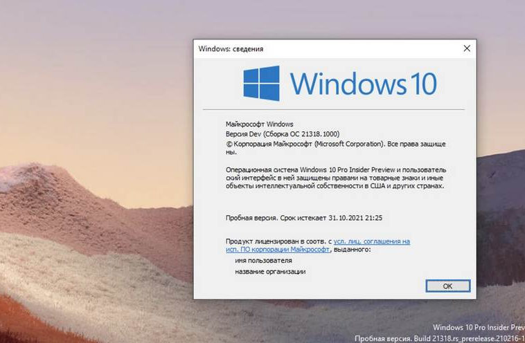 В сборке 21318 Windows 10 буфер обмена получил инструмент управления