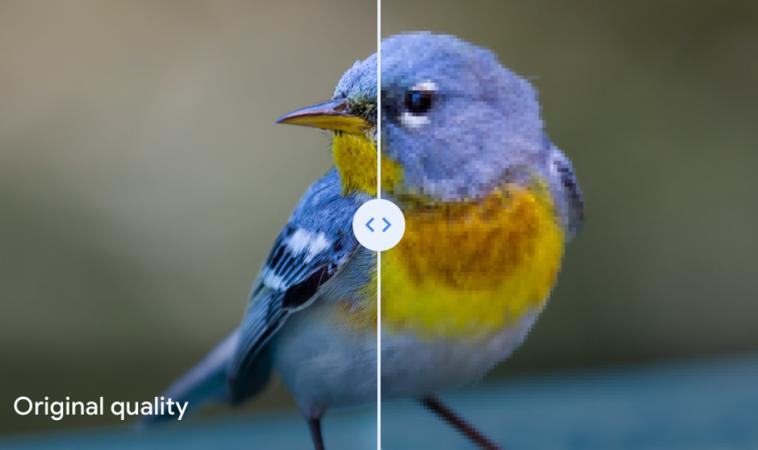 На Google Photos начнут сжимать качественные фото с искажениями