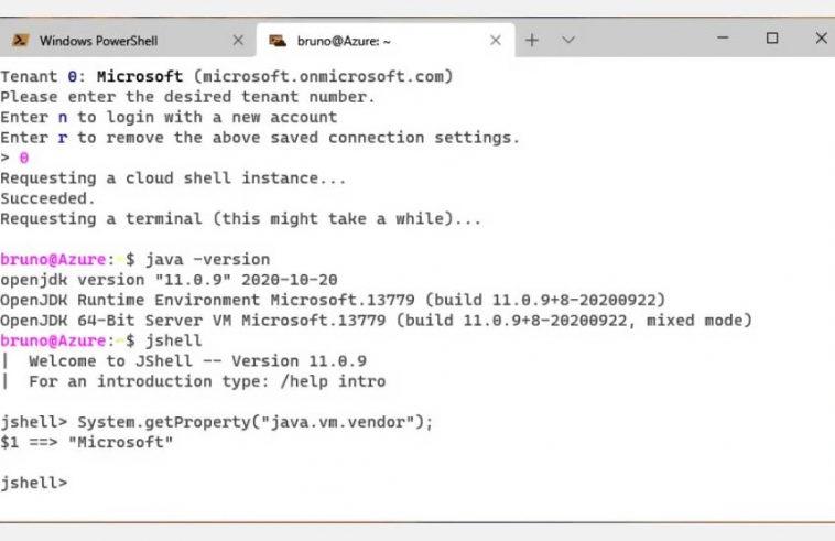 Microsoft представила превью Microsoft Build of OpenJDK