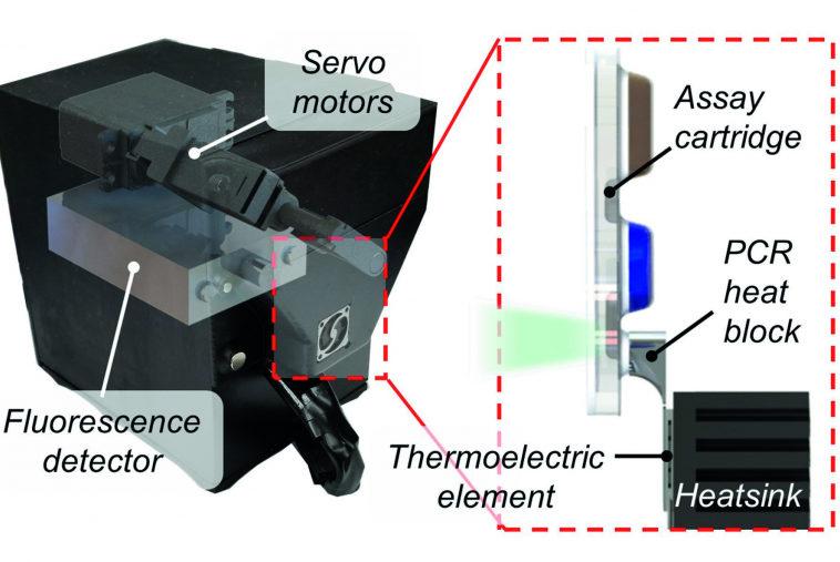 Исследователи разработали устройство для быстрой диагностики гонореи