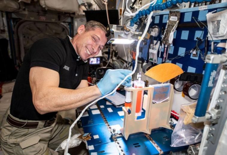 НАСА рассказало, как поливать растения в невесомости и как это помогает экипажу