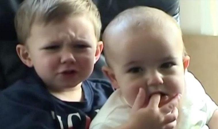Покупатель NFT ролика «Charlie Bit My Finger» сохранил оригинал на YouTube