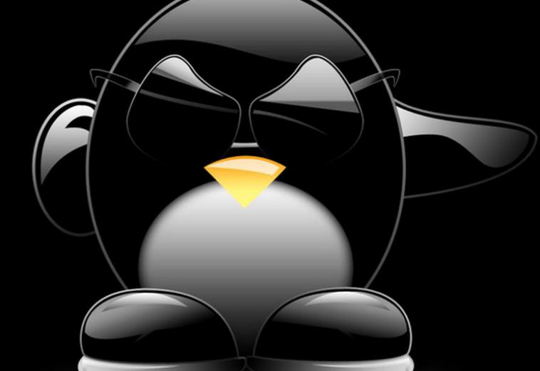 Скрытое вредоносное ПО для бэкдора Linux обнаружили спустя три года