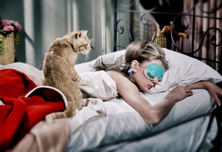 Ученые выяснили, как мозг укрепляет воспоминания во время сна