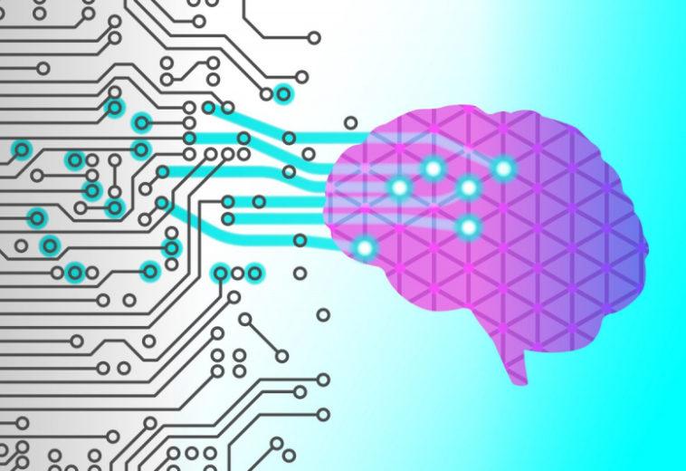 Нейробиологи впервые увидели, как мозг ошибается при извлечении информации из памяти