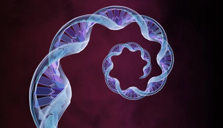 Биологи нашли в болотах загадочные внехромосомные фрагменты ДНК, усиливающие метаболизм архей