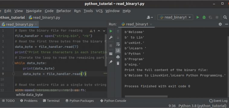 Чтение бинарных файлов с помощью Python