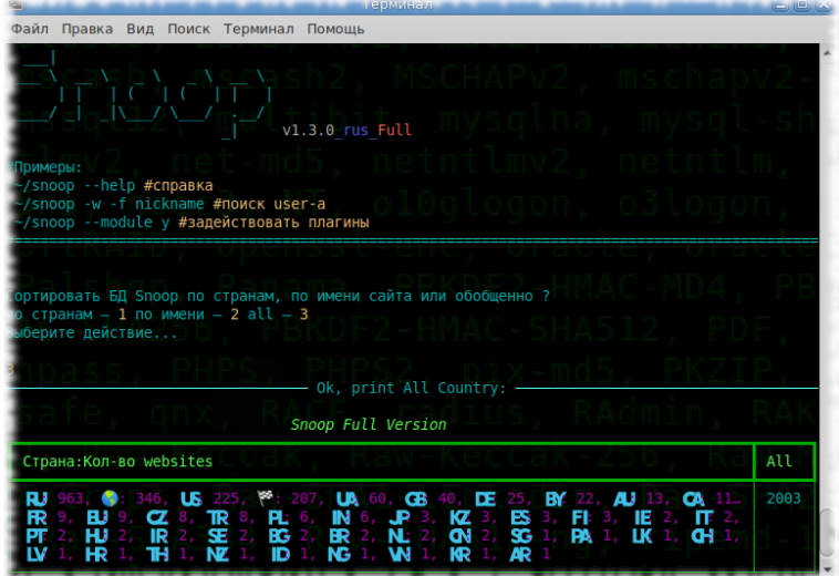 [RU] Обновление OSINT-инструмента Snoop Project до v1.3.0