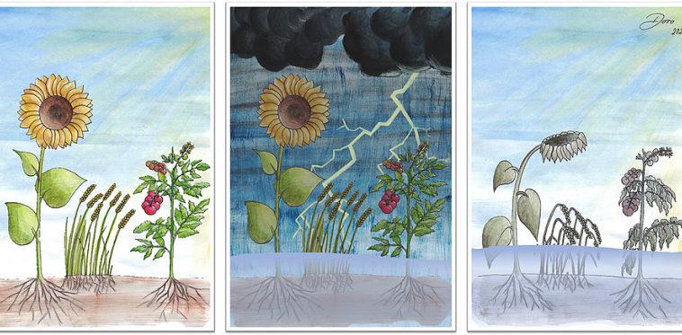 У растений нашли датчик кислотности