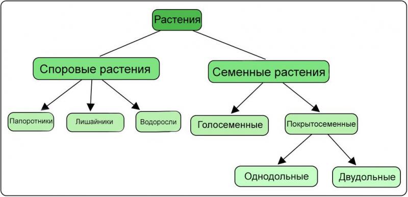 obzor metodov klassifikacii v mashinnom obuchenii s pomoshhju scikit learn 61e0057 - Обзор методов классификации в машинном обучении с помощью Scikit-Learn